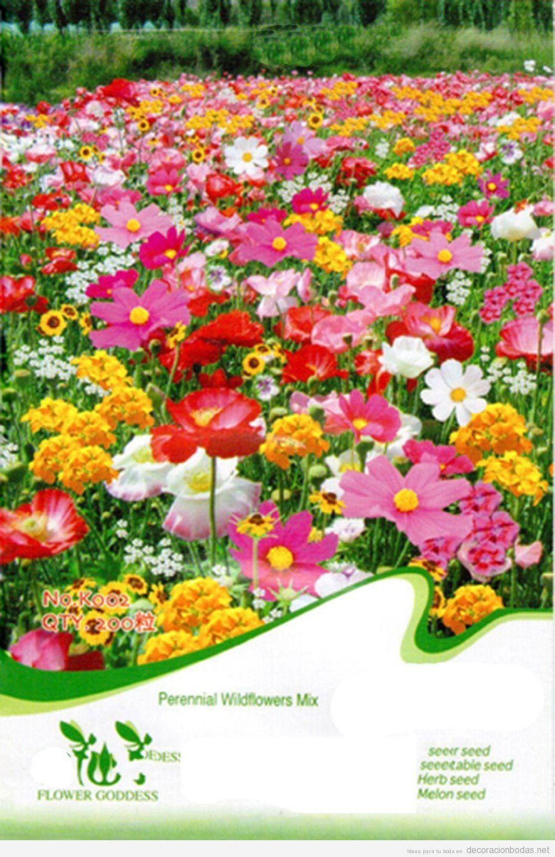 Comprar online semillas flores, regalo bodas