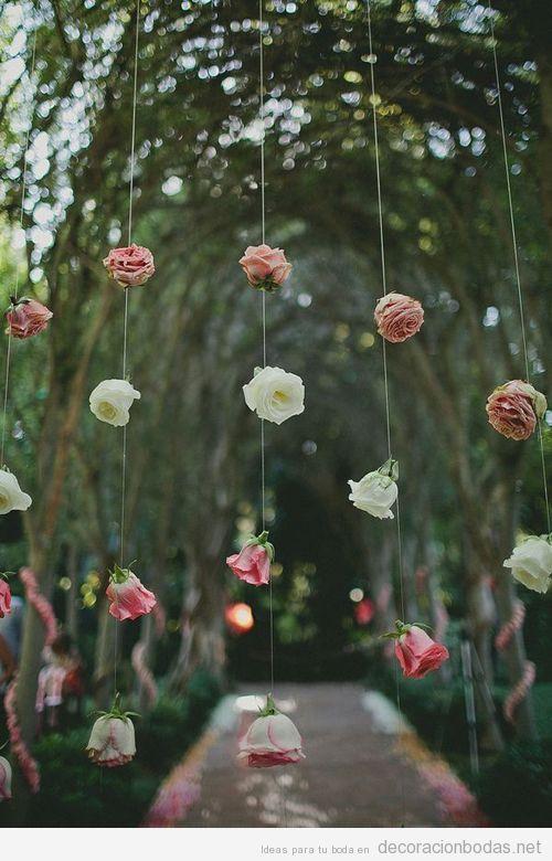 Rosas colgadas de unos hilos como cortina de flores