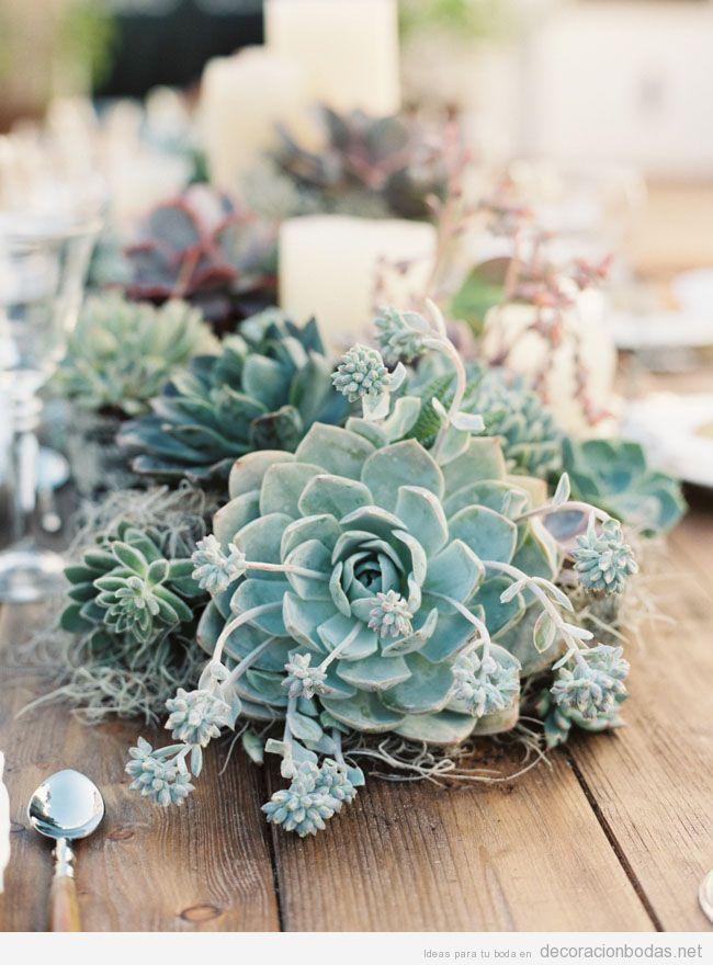 Centro de mesa de boda decorado con plantas carnosas, como la suculenta