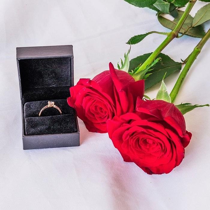 Rosas preservadas anillo de compromiso